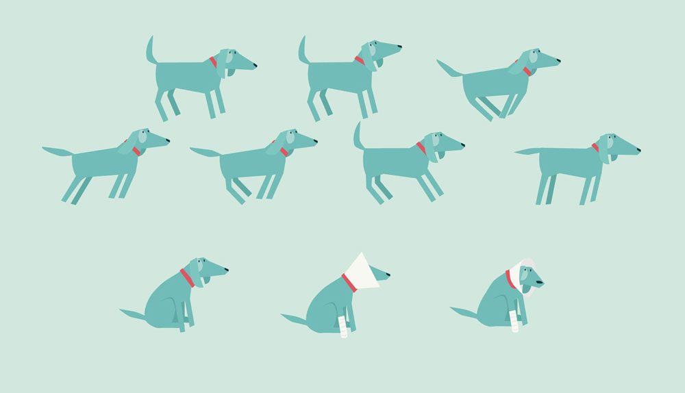 Dogs_Web